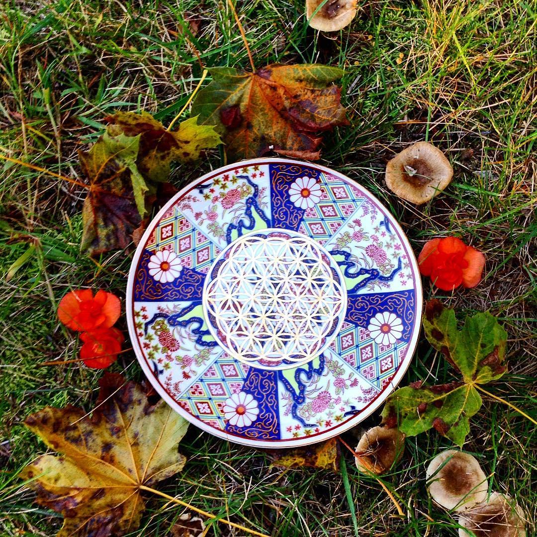 The mushrooms tho Sacred Geometry Crystal Grids on Vintage Plates Restocked⚡️